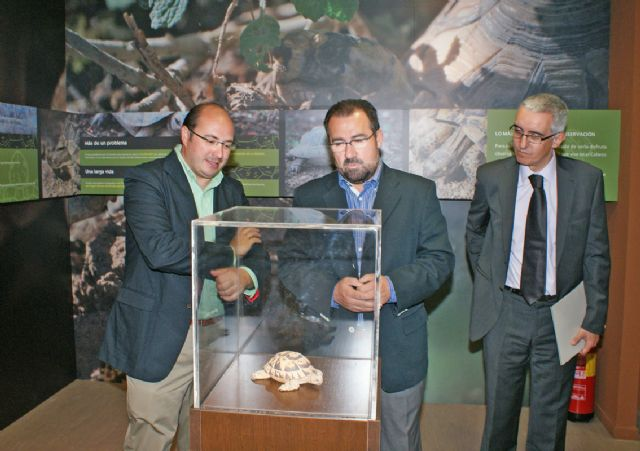 El nuevo Centro de Interpretación de la Naturaleza recibe medio millar de visitas desde su apertura el pasado mes de junio - 4, Foto 4