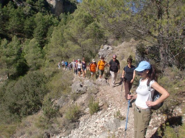 M�s de una quincena de senderistas participaron en la primera ruta del programa deportivo organizado por la concejal�a de Deportes, Foto 1