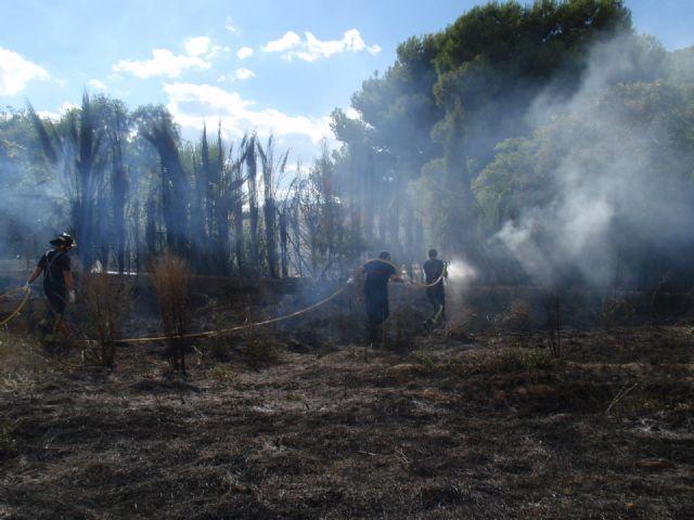 Protecci�n Civil, Bomberos, Agentes Forestales y Polic�a Local de Totana participan en las labores de extinci�n de un incendio, Foto 2