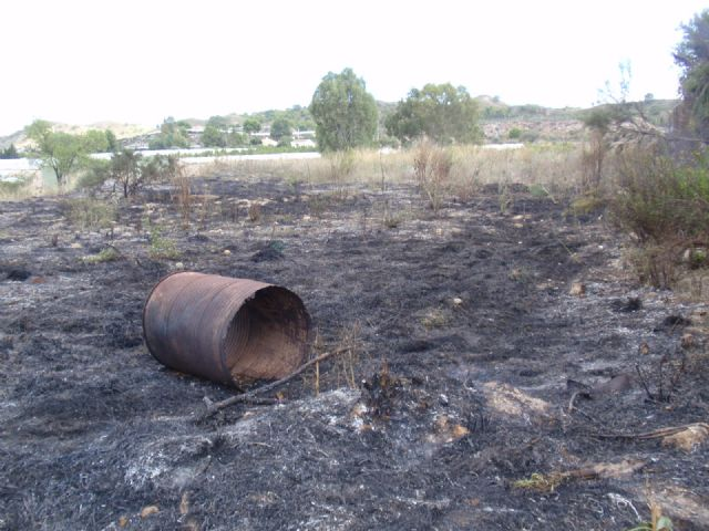 Protecci�n Civil, Bomberos, Agentes Forestales y Polic�a Local de Totana participan en las labores de extinci�n de un incendio, Foto 3