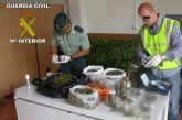 La Guardia Civil detiene a una persona por cultivo y tráfico de 'marihuana'