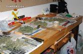 La Guardia Civil desmantela dos puntos de producción y distribución de marihuana en Archena y Pliego