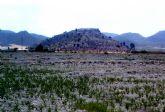 El yacimiento arqueológico de La Islica de Puerto Lumbreras ha sido declarado como Bien Catalogado por su Interés Cultural