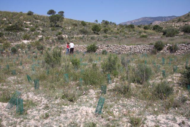 Molina de Segura, mirador científico hacia la biodiversidad - 1, Foto 1