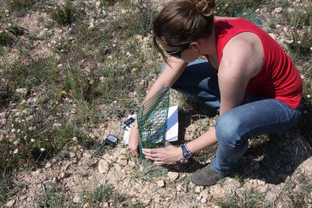 Molina de Segura, mirador científico hacia la biodiversidad - 2, Foto 2