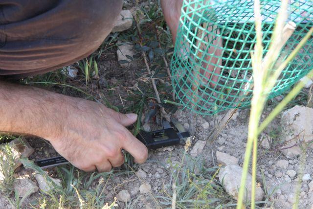 Molina de Segura, mirador científico hacia la biodiversidad - 3, Foto 3