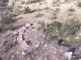 El yacimiento arqueológico Loma de Soler de Puerto Lumbreras ha sido declarado como Bien Catalogado por su Interés Cultural
