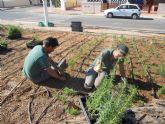 La unidad de jardinería de la Escuela Taller Molino Quintín trabaja en la remodelación del Parque 'José Antonio Pérez Henarejos'