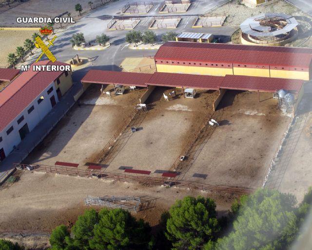 La Guardia Civil inmoviliza una escuela de arte ecuestre - 1, Foto 1