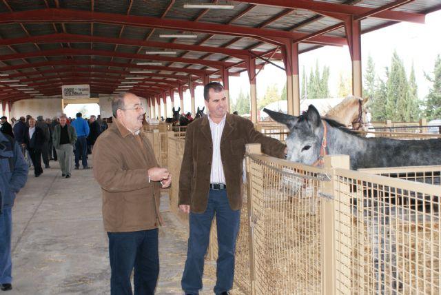 Inaugurada la tradicional Feria de Ganado Equino que se celebra durante todo el fin de semana en Puerto Lumbreras - 1, Foto 1