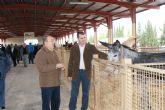 Inaugurada la tradicional Feria de Ganado Equino que se celebra durante todo el fin de semana en Puerto Lumbreras