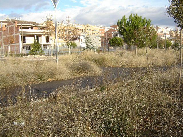 El Grupo Municipal Socialista denuncia la situación de desidia en la que se encuentra todo el entorno de los molinos de papel - 3, Foto 3