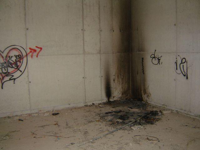 El Grupo Municipal Socialista denuncia la situación de desidia en la que se encuentra todo el entorno de los molinos de papel - 4, Foto 4