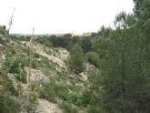 Comienza en Las Torres de Cotillas el acondicionamiento de la Rambla Salada como itinerario ecoturístico