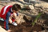 Medio Ambiente y Deportes animan a los vecinos de Totana para que preserven la vida del árbol de Navidad