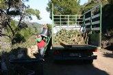 La Comunidad elimina especies invasoras en el Parque Regional de Calblanque