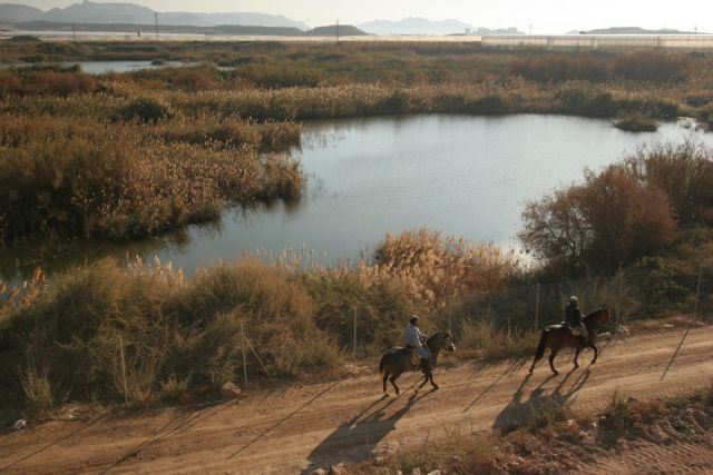 El humedal de Las Moreras incluido en la lista Ramsar - 1, Foto 1