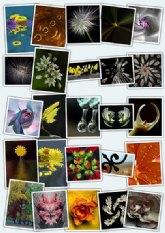 Exposición de fotografía 'Descubriendo Formas'