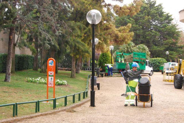 The city removed three municipal park casuarinas Marcos Ortiz