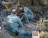 La Guardia Civil detiene al presunto autor de cuatro incendios provocados intencionadamente