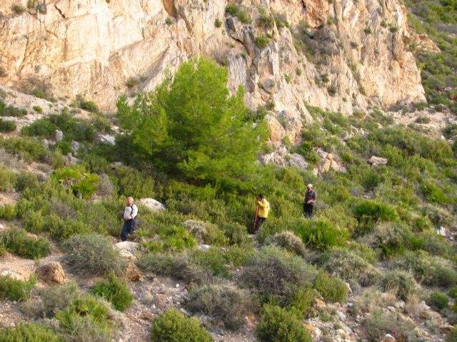 The Shining Path of Totana club made a path for the Sierra de la Muela in Cartagena