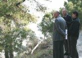 Obras Públicas financia la reforestación de 12 hectáreas de la sierra de La Atalaya de Cieza