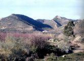 El yacimiento arqueológico Picacho de Tercia de Puerto Lumbreras ha sido declarado Bien de Interés Cultural