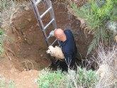 Rescatan un perro de un pozo en Fuente Álamo