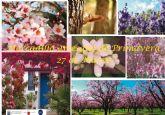 La oferta turística del Santuario de La Santa volverá incrementarse con la celebración del Mercadillo de La Santa