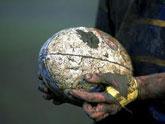 El Club de Rugby de Totana inicia su andadura como el séptimo club de la Región