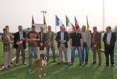 Más de 400 ejemplares de perros de raza bóxer durante el fin de semana en Puerto Lumbreras en el Campeonato del Año Bóxer España