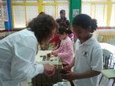 Más de 90 alumnos de los centros educativos de Alguazas participan en charlas y talleres sobre medioambiente