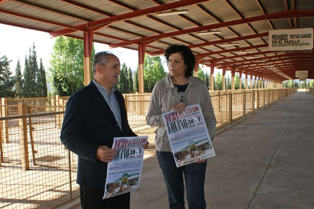 Puerto Lumbreras acogerá el próximo fin de semana la tradicional Feria de Ganado Equino con la participación de más de 500 cabezas de ganado - 1, Foto 1