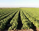 SPCT apuesta por crear la concejalia de Agricultura y Desarrollo Rural