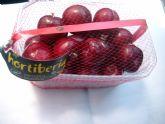El Grupo Hortiberia cree que la campaña de fruta de hueso viene avalada por unas buenas calidades
