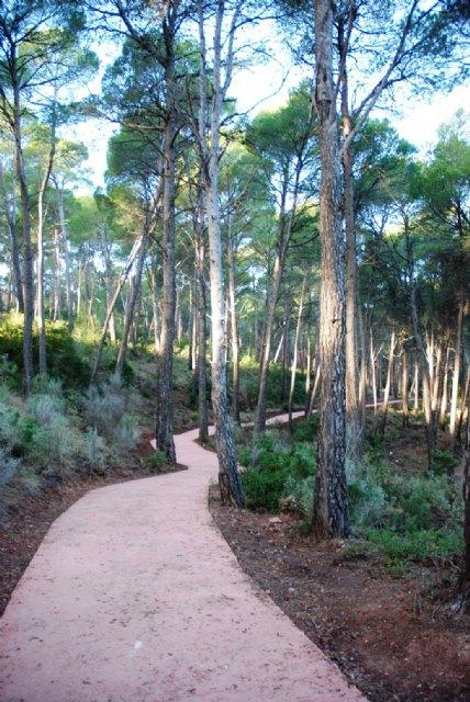 La Comunidad organiza actividades para todos los públicos con motivo del Día Europeo de los Parques, Foto 1