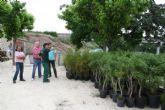 Viveros La Aparecida dona 283 plantas para repoblar zonas sin vegetación