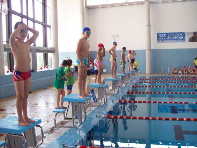 Más de 60 nadadores, de entre 5 y 16 años, han participado en la Competición Solidaria de Natación - 1, Foto 1