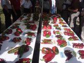 Jornada de Exposici�n de Variedades Tradicionales de pimiento de la Regi�n de Murcia