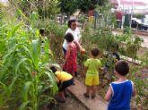 El huerto escolar del colegio 'La Paz' se integra en el programa de la Escuela de Verano