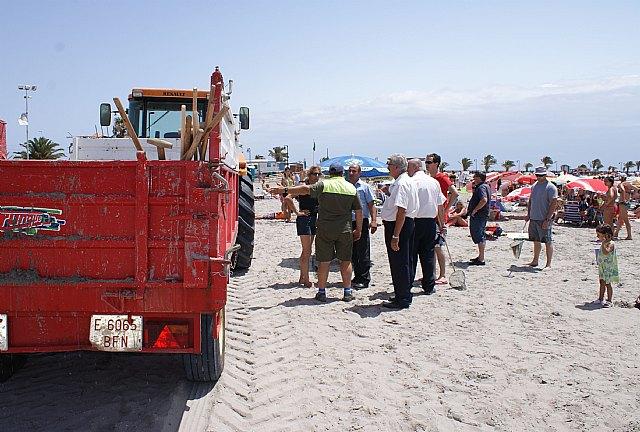 El Ayuntamiento de San Pedro pone en marcha un dispositivo para la retirada de medusas en las playas - 2, Foto 2