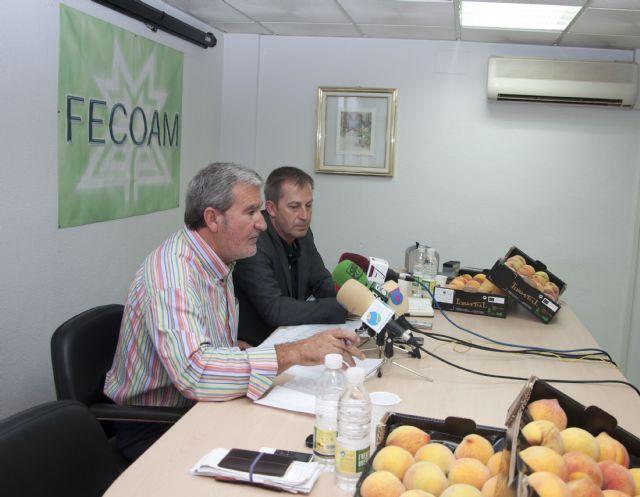 Las cooperativas agrarias rechazan el acuerdo de la Comisión Europea de ayudas por la crisis de la 'E. coli' - 2, Foto 2