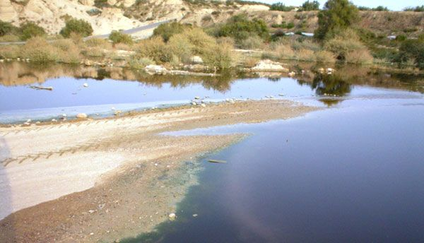 The council of Agriculture and Water regrets that CHS do not assume the cleaning, maintenance and fumigation Guadalentín River during the summer months