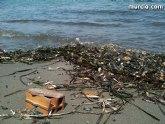 La concejalía de Medio Ambiente colabora con la II Limpieza de playas, rocas y fondos marinos en La Manga