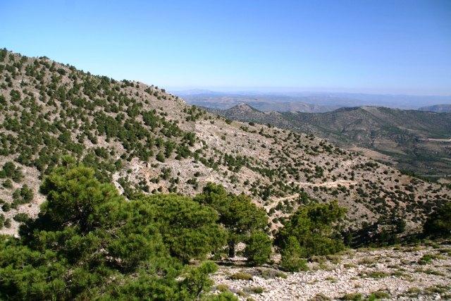 El Ejecutivo murciano regenera los hábitats degradados en la Sierra de Revolcadores de Moratalla - 1, Foto 1