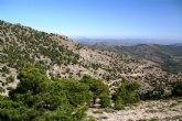 El Ejecutivo murciano regenera los hábitats degradados en la Sierra de Revolcadores de Moratalla
