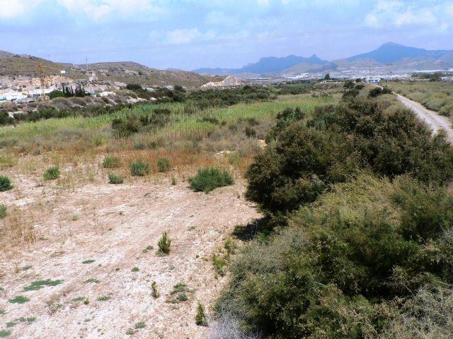La CHS preparada para acometer la limpieza de las ramblas de Las Moreras y Los Cazadores - 2, Foto 2