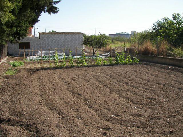 Campaña de la Concejalía de Agricultura para prevenir la propagación de plagas que dañan a todos los cultivos - 1, Foto 1