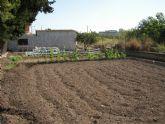 Campaña de la Concejalía de Agricultura para prevenir la propagación de plagas que dañan a todos los cultivos