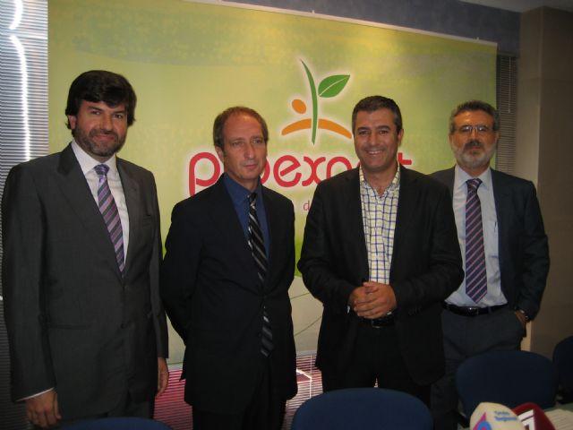 PROEXPORT aborda el proceso de producción de frutas y hortalizas desde el campo a la mesa en el curso online Funcionamiento de las empresas en el sector hortofrutícola - 1, Foto 1